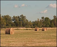 Rural Land Loans for Australians